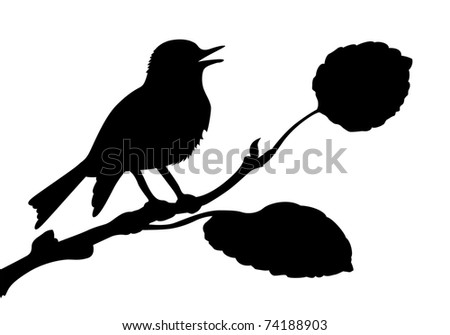 silhouette of the bird on branch - stock photo