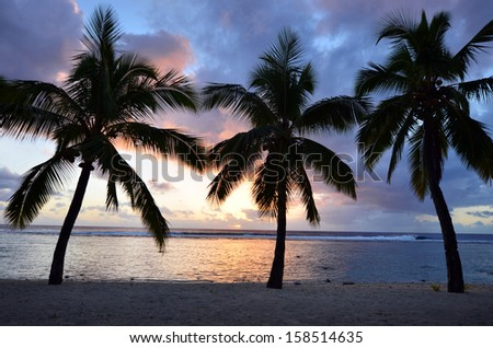 Silhouette of three coconut palm trees at Titikaveka beach in Rarotonga Cook Islands during sunset. - stock photo
