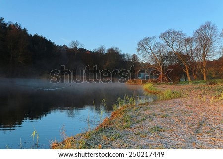 silhouette of tree a by the lake a foggy morning in October. - stock photo