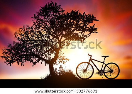 silhouette of tree and bike on beautiful sunset - stock photo