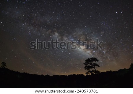 Silhouette of Tree and Milky Way  Phu Hin Rong Kla National Park,Phitsanulok Thailand - stock photo