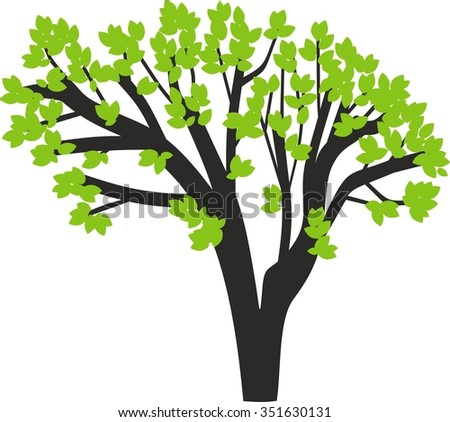 silhouette of tree with green leaves
