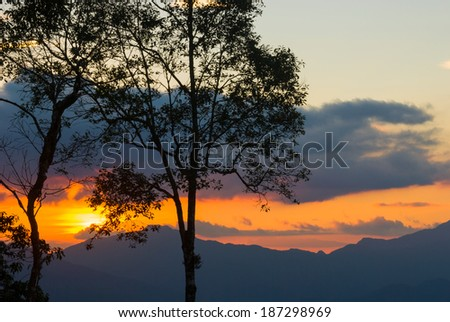 Silhouette of trees over beautiful sunset sky - stock photo