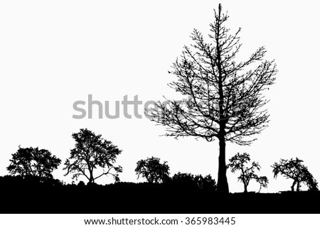 Silhouette of trees with bare branches - winter scenery - trees afar- landscape and black space for text - isolated - illustration