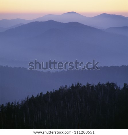 Silhouette of trees with mountains in background