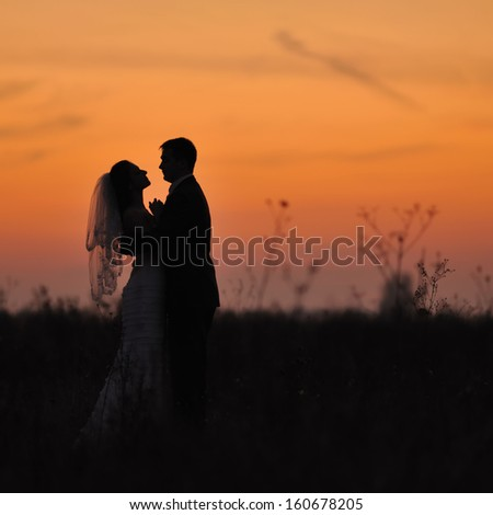 Silhouette of  wedding couple in field. Bride and groom together. - stock photo