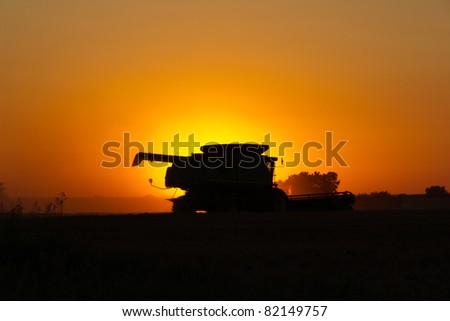 Silhouette of wheat harvester working at dawn.