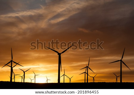Silhouette of wind turbines generating electricity at sunset.. - stock photo
