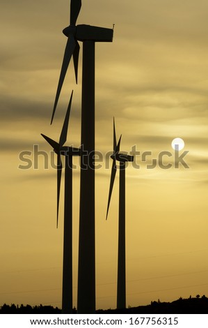 silhouette of windmills for renewable electric energy production - stock photo