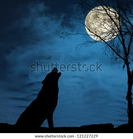 Silhouette of wolf howling on the full moon - stock photo
