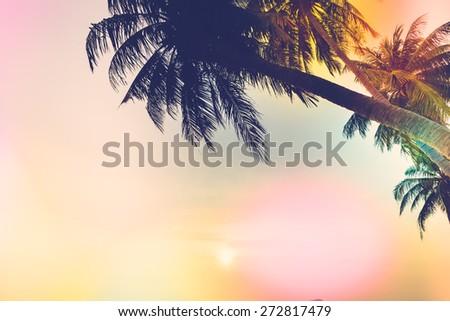 Silhouette palm tree - vintage filter - stock photo
