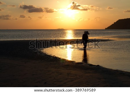 Silhouette shot of unidentified local fisherman finding the shell in the sea during the sun going down, the sky getting dark on koh samui island, the southern part of Thailand