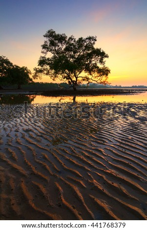 Silhouette , Sunrise on the Lake , Chumphon , Thailand , Nature