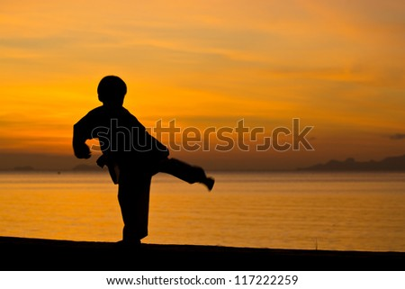 Silhouette taekwondo boy on the beach at dusk.