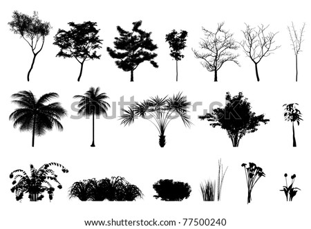 Silhouette: trees, plants and flowers - stock photo