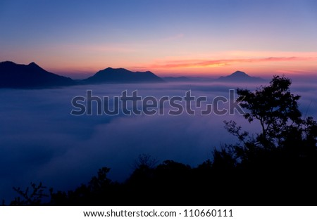 Silhouette view of  bush with beautiful landscape - stock photo