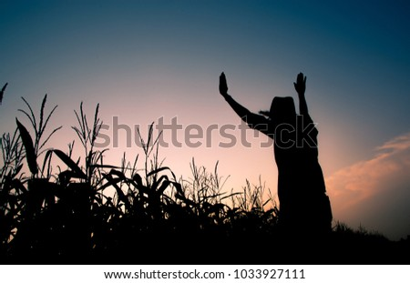 Silhouette woman in the corn field with  beautiful sunset sky.