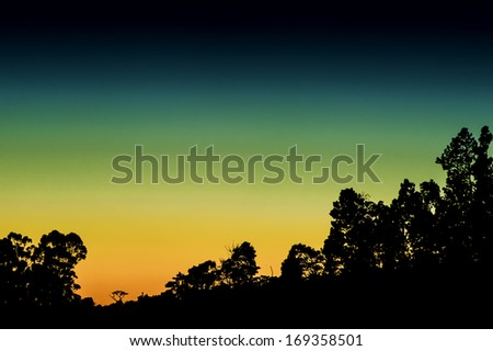 Silhouetted trees against a colorful sunset in Costa Rica - stock photo