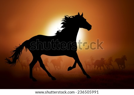 Silhouettes horse against the sunset in meadow - stock photo