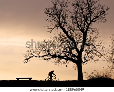 Silhouettes of a tree, a bench and a cyclist against a colorful evening sky - stock photo