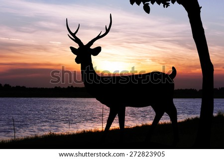 Silhouettes of deer in lake water against orange sunset  skyline background Wild life landscape - stock photo