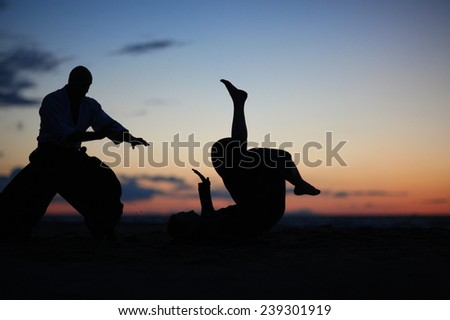 Silhouettes of martial arts masters on the sunset beach - stock photo