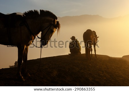Silhouettes of men and the horses on the top of the hill with misty atmosphere