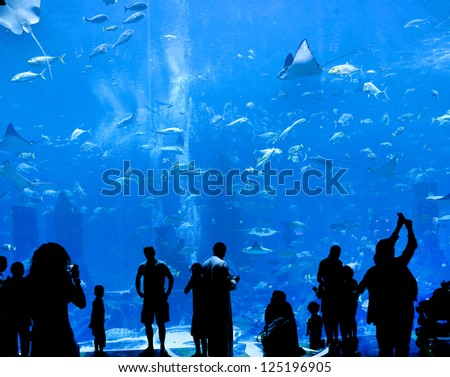 silhouettes of people against a big aquarium - stock photo