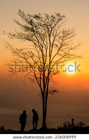 Silhouettes of photographers and tree at sunrise