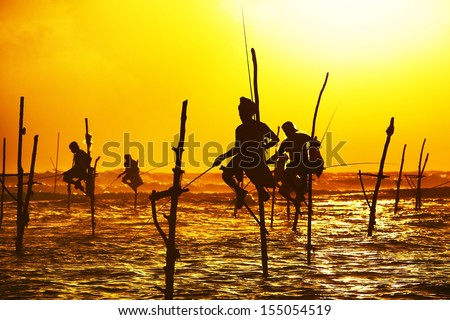 Silhouettes of the traditional fishermen at the sunset near Galle in Sri Lanka.   - stock photo