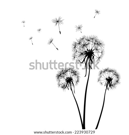 silhouettes of three dandelions in the wind; illustration - stock photo
