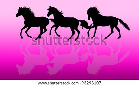 Silhouettes of three running horses over magenta background - stock photo
