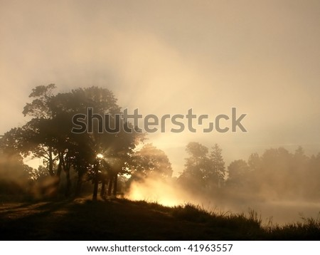 Silhouettes of trees on the edge of the misty lake at sunrise. Photo taken in October. - stock photo