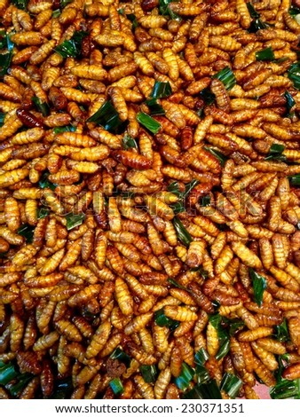 Silkworm pupa fried,delicious food - stock photo