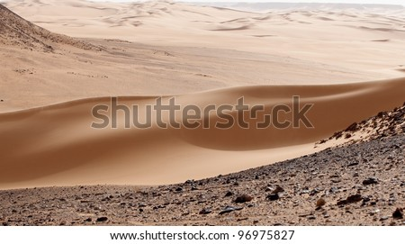 Silky Dune - stock photo