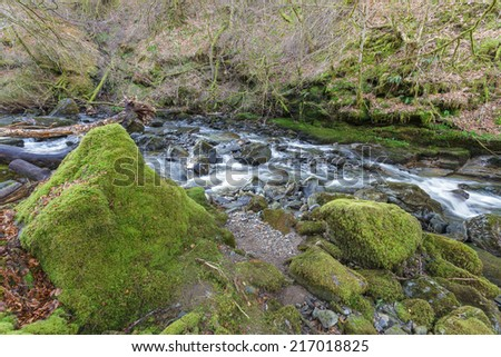 Silky Smooth Forest Stream with Mossy Boulders  - stock photo