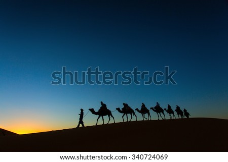 Sillhouette of camel caravan going through the desert at sunset with blue and red sky