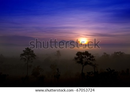 Silouette's sunset - stock photo
