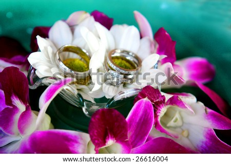 Silver and diamond wedding rings set amongst flowers. - stock photo