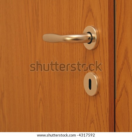 silver lock on the wood brown door