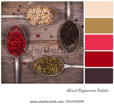 Silver spoons containing a variety of peppercorns, over old vintage style table, in a colour palette with complimentary colour swatches - stock photo