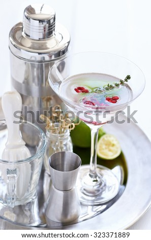 Silver tray holding a martini with pomegranate seeds and thyme sprig and cocktail making equipment tools - stock photo