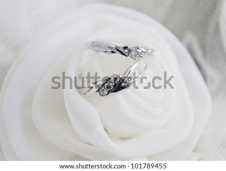 Silver wedding rings on white rose; focus on stones