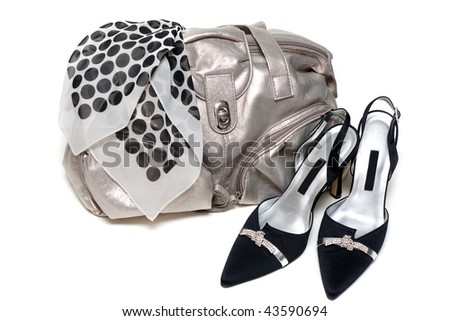 Silvery feminine leather bag and pair of the loafer on white background - stock photo