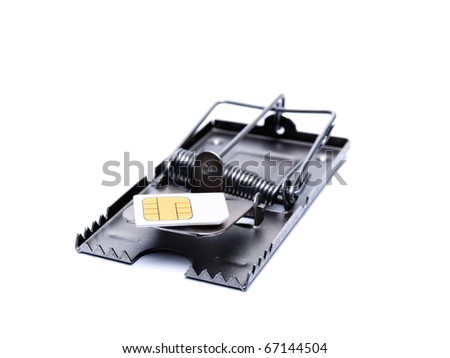 SIM card on the mousetrap isolated on a white background. - stock photo
