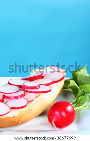 simple and healthy radish sandwich