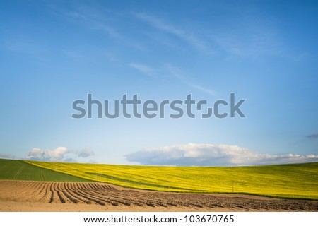 simple brown field horizon with blue sky