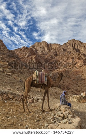 SINAI PENINSULA, EGYPT - DECEMBER 15. Bedouin with camels on the background of Mount Moses, Sinai Peninsula, Egypt, December 15, 2010. Bedouin pilgrims waiting to climb the mountain of Moses. - stock photo