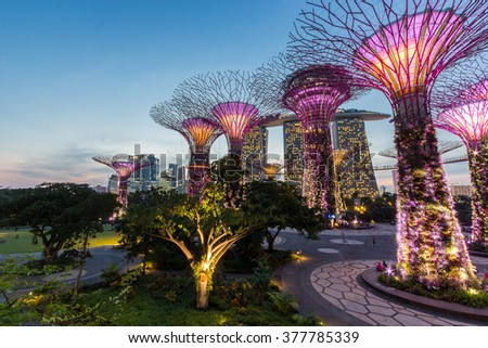 SINGAPORE - AUG 22, 2013: Panorama view of Super tree Grove at Gardens by the Bay and Marina Bay Sands hotel. Night view of Super tree Grove walk and Marina Bay Sands hotel at Dusk Summer, Singapore - stock photo