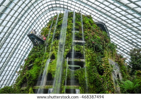 singapore august 8 2016 cloud forest dome botanic garden showcases plant life - Tropical Garden 2016